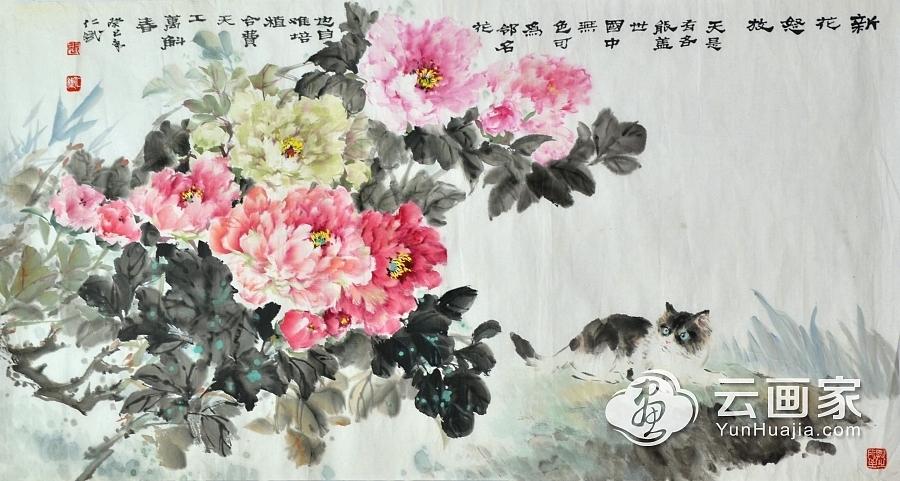 牡丹-猫@张仁斌