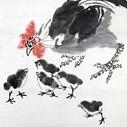 鸡公育雏图