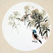 花鸟003